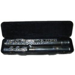 Arnolds AFL210E flute