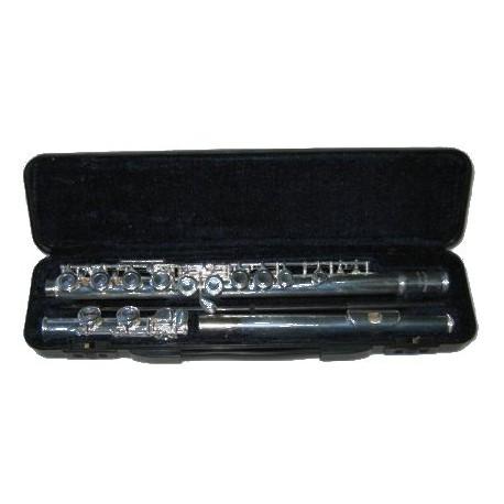 Arnolds AFL211E-flute