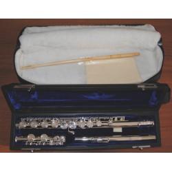 DiZhao DZ-200 flute