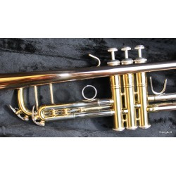Garry Paul GPT900 B trombita