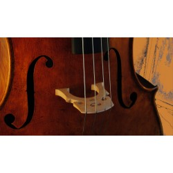 Cello for artists