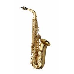 Yanagisawa A-W010 alto saxophone