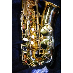 Garry Paul 808 alto saxophone