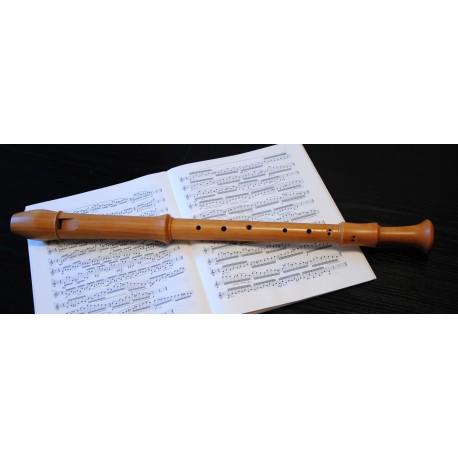Aura C tenor recorder
