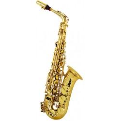 Arnolds AAS100 alto  saxophone