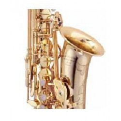Arnolds AAS 300 alto  saxophone