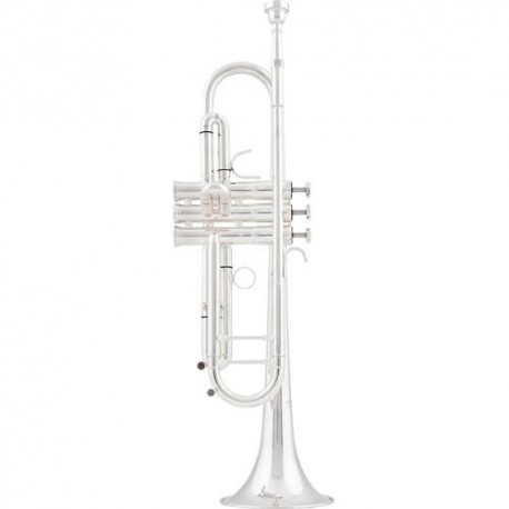 Arnolds & Sons ATR5200GS Bb trumpet