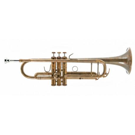 John Packer 251 SW B trombita